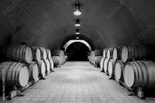 Fotomural  Weinkeller, Bodega, Albariño, Rías Baixas, Galizien, España