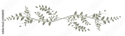 green decorative element on white background - decoration