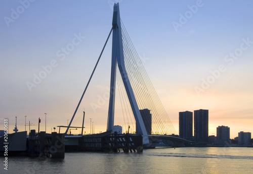 Foto auf Acrylglas Schwan Erasmus Bridge at sunset