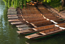 Traditional Cambridge Punting ...