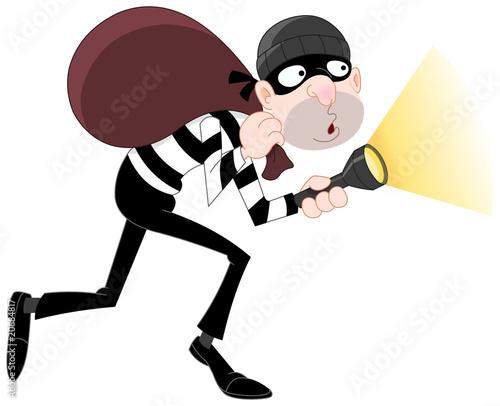 Fotografía  Sneaking thief