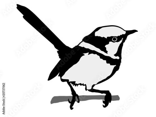 Fotografie, Obraz  silhouette of wren