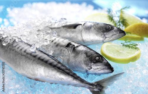 Deurstickers Vis Fisch