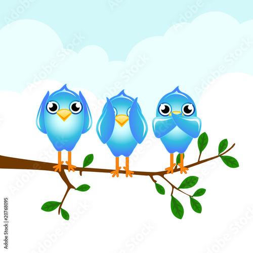 Poster Oiseaux, Abeilles twitter do no evil