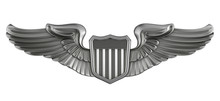 3d Render Pilot Badge
