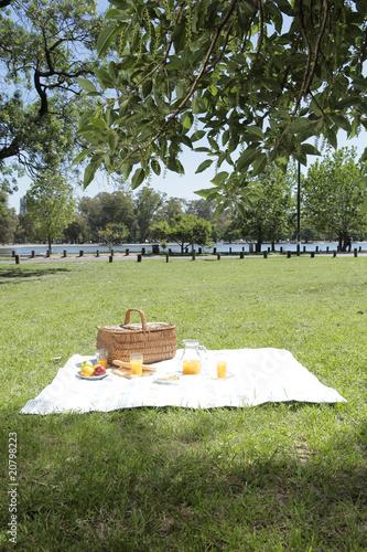 Stickers pour porte Pique-nique Lunch in a park