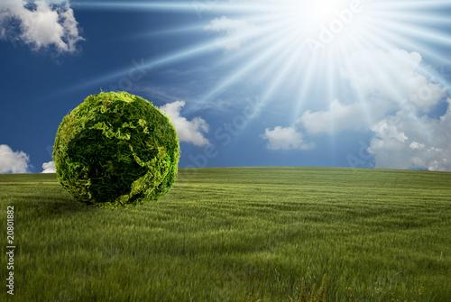 energie alternative Canvas Print