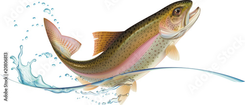 Canvas Print Jumping trout