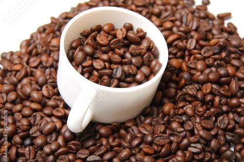 Recess Fitting Coffee bar c