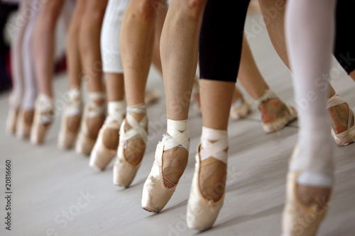 bailarinas Canvas