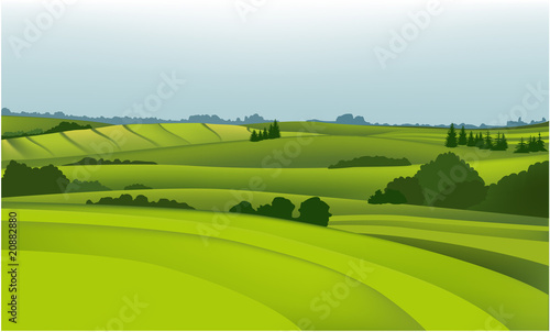 Poster Lime groen Green field