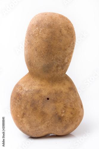 Fotografia  Funny potato