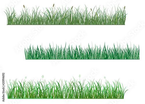 Fototapeta Green grass patterns obraz na płótnie