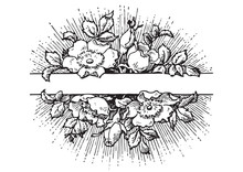 Antique Flowers Banner Engraving (vector)