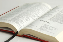 An Opened Bible Focused On The Word Psalms