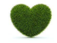 Heart From Grass Isolated On White