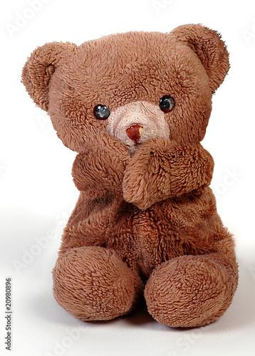 Teddy #20980896