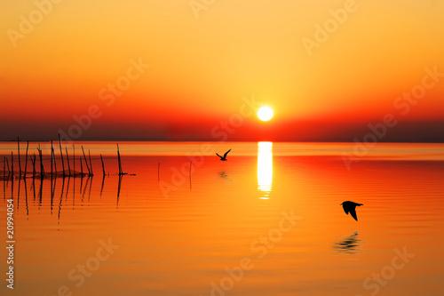 Spoed Fotobehang Oranje eclat sol en el mar
