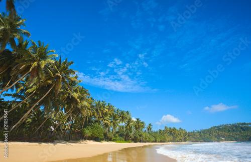 Fotografie, Obraz  Idyllic beach. Sri Lanka