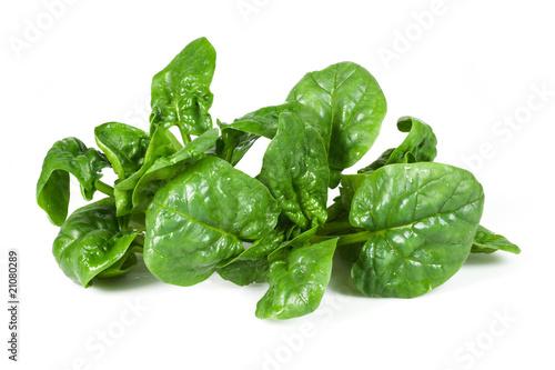 Fotografiet  spinaci due ciuffi