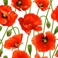 Fototapeta Maki Seamless background: poppy