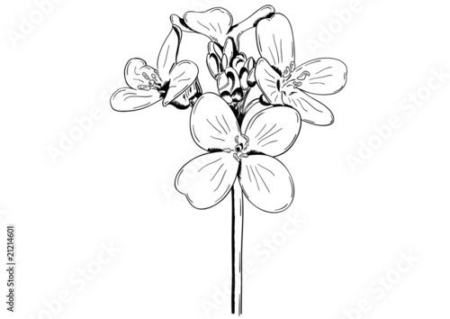 Tuinposter Abstract bloemen flower