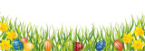 Fototapeta Kwiaty - Pisanki i żonkile w trawie
