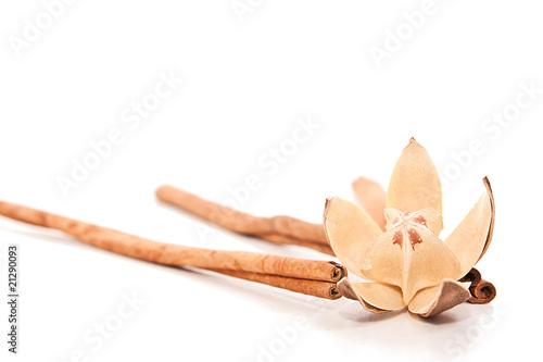 Fototapeta Cinamon sticks and flower obraz