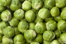 Green Fresh Brussels Sprouts Full Frame