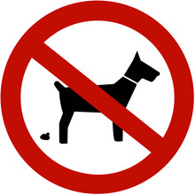 No Dogs Pooping Allowed (sign)