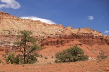 The Spectacular Colours Of Capitol Reef National Park