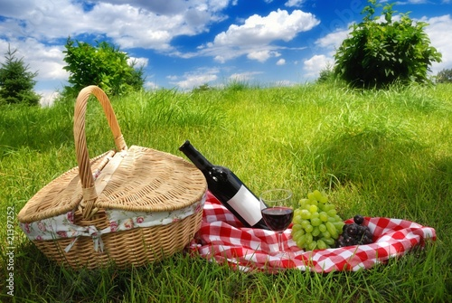 In de dag Picknick Picnic