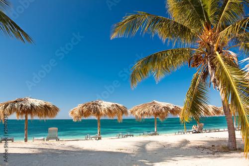Foto op Plexiglas Caraïben Caribbean Island Paradise