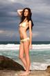 Attractive Young Woman Wearing a Bikini