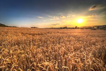 Sunset landscape in Poland