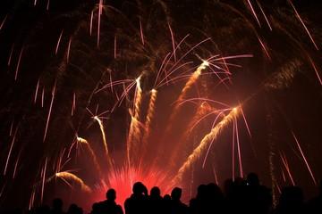 Fototapeta na wymiar Firework show