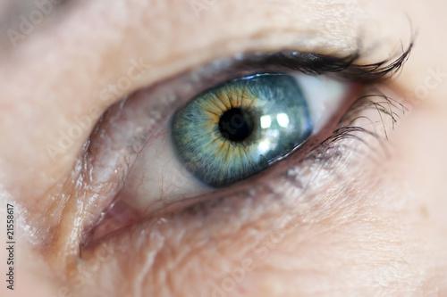 Fotobehang Macrofotografie das Auge