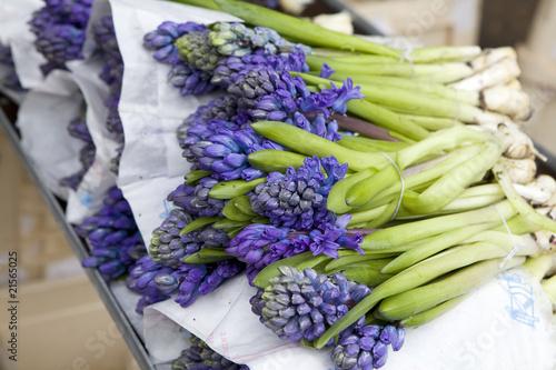 Papiers peints Jardin blue hyacinths. Shop of flowers. Basket of hyacinths