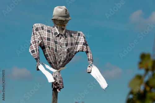 Scarecrow in a vineyard Wallpaper Mural