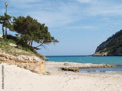 Cala Llonga beach Ibiza