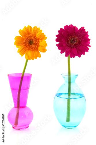 Ingelijste posters Gerbera Colorful Gerber in glass vases