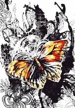 Butterfly In Nature Poster Design