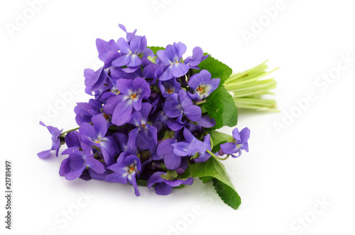 Violet bouquet on white background