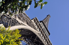 The Eiffel Tower In Spring #1