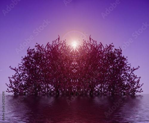 Cadres-photo bureau Violet WaterArbre1
