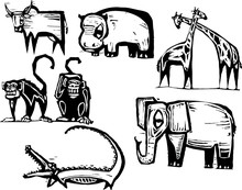 African Animal Group