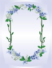 Blue Lilac Frame