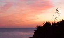Sonnenuntergang,Praia Da Rocha...