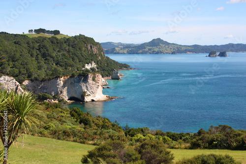 Foto op Canvas Cathedral Cove Coromandel Peninsula, New Zealand