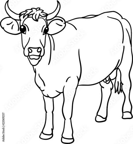 Tuinposter Doe het zelf vector - cow stood, the view from the front